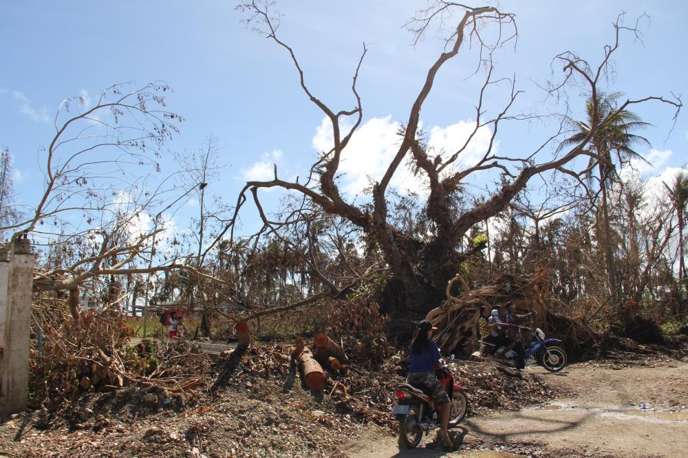 Toni-Tiemsin-Save-the-Children-Typhoon-Ruby-Hagupit-Samar-7