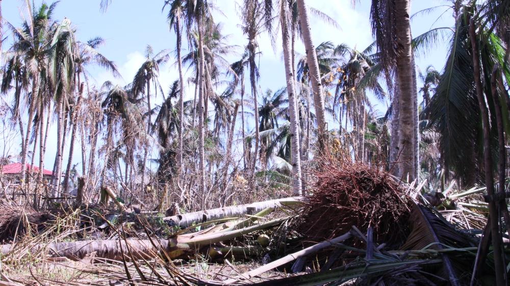 Toni-Tiemsin-Save-the-Children-Typhoon-Ruby-Hagupit-Samar-SubSelfie-5