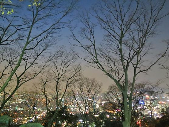 Downtown panorama of Seoul.