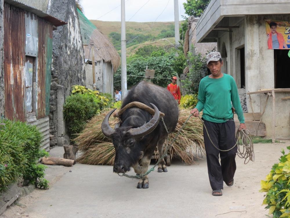 A local farmer at Sabtang Island