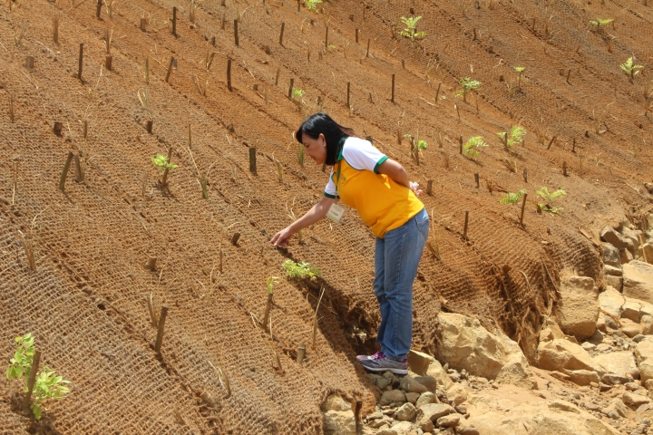 Coco net coco coir sophia balod subselfie mining climate for Soil 4 climate