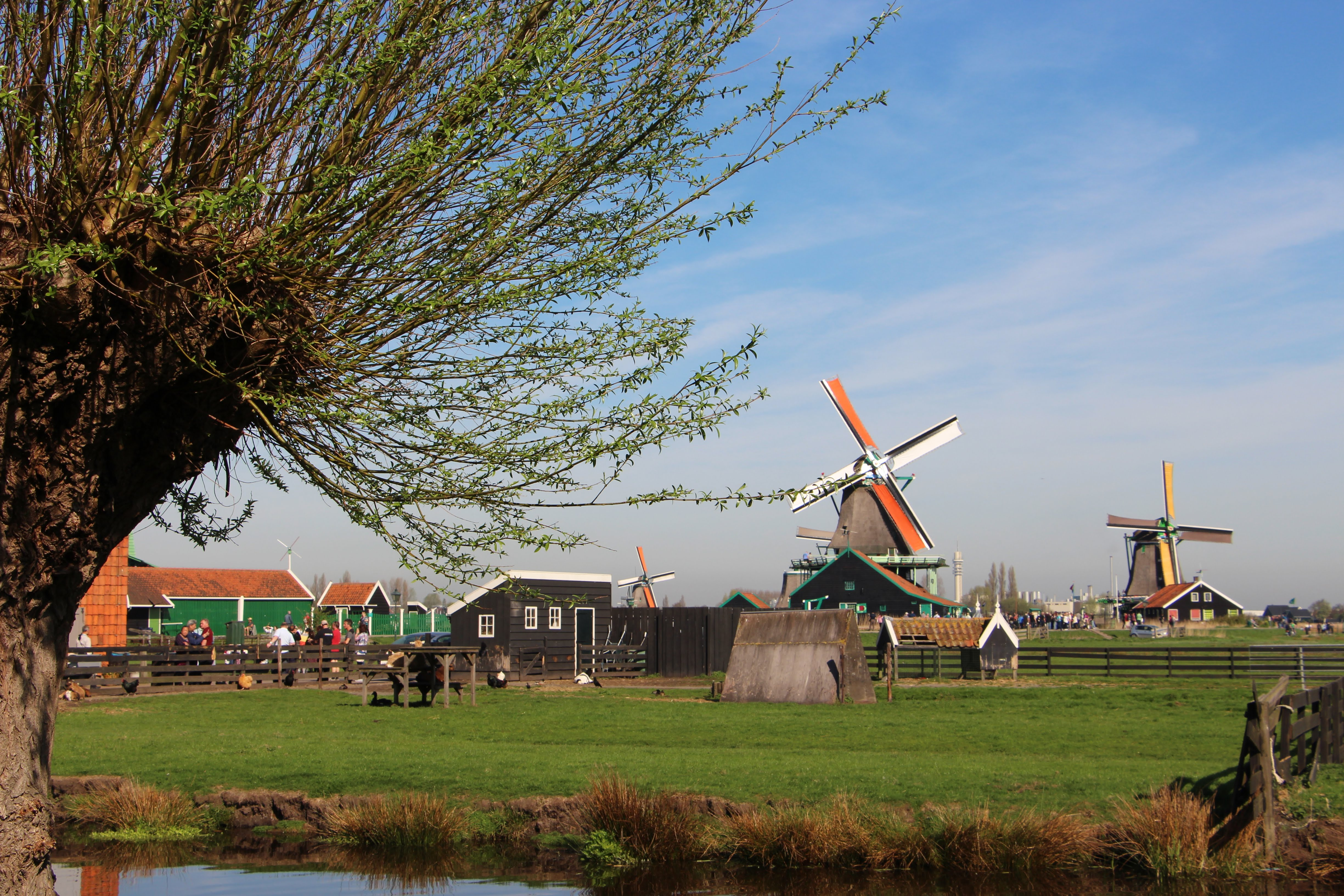 The colorful windmills of Zaanse Schans